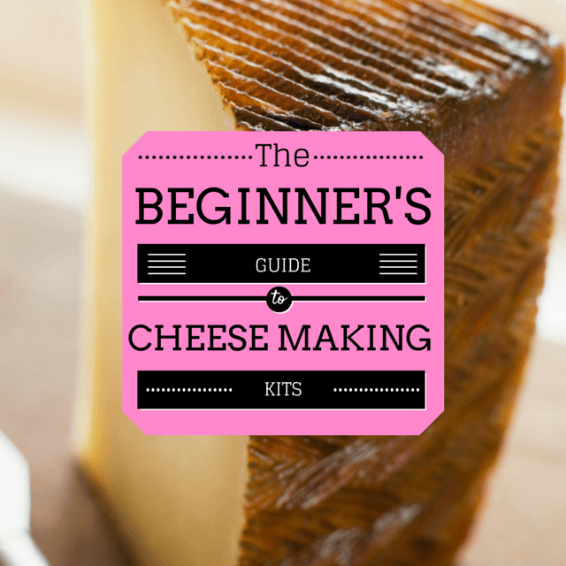 beginners guide to cheese making kits